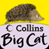 icon for Collins Big Cat: It Was a Cold, Dark Night Story Creator
